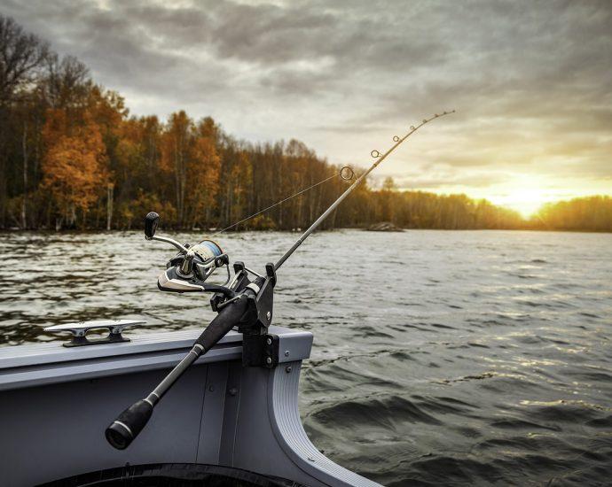 Akcesoria dla miłośników łowienia ryb